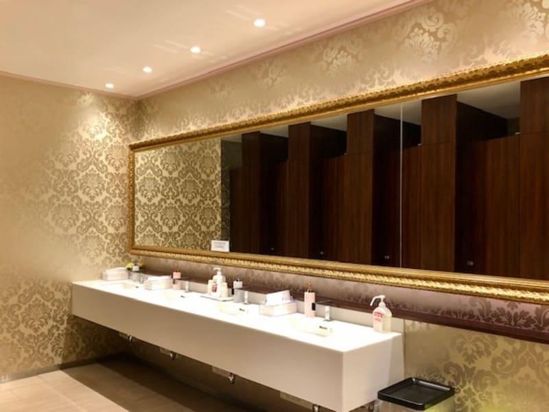 ラグナヴェールプレミア お化粧室